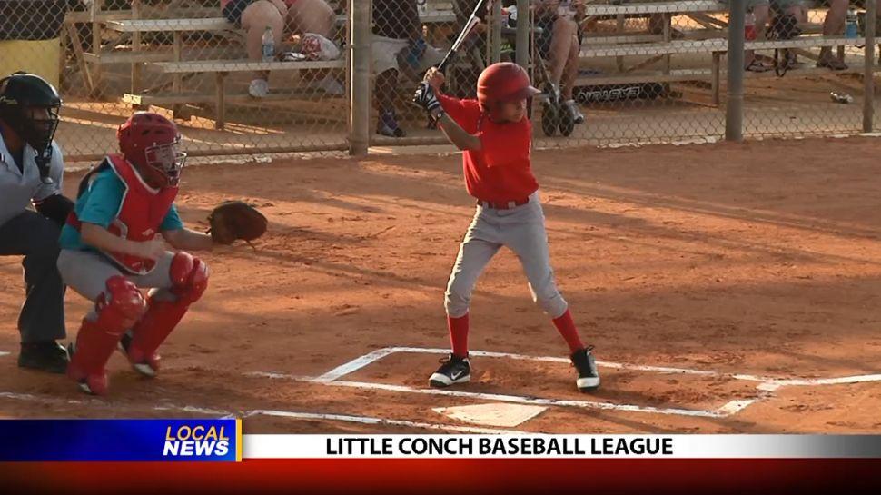 Little Conch Baseball League - Local News