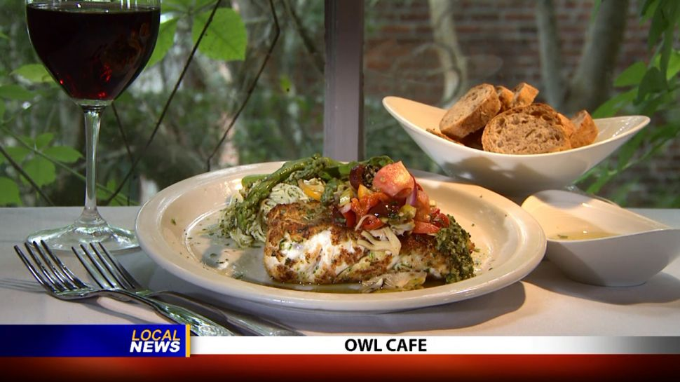 Owl Cafe - Local News