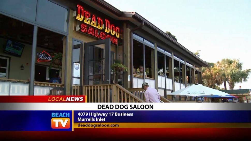 Dead Dog Saloon - Local News