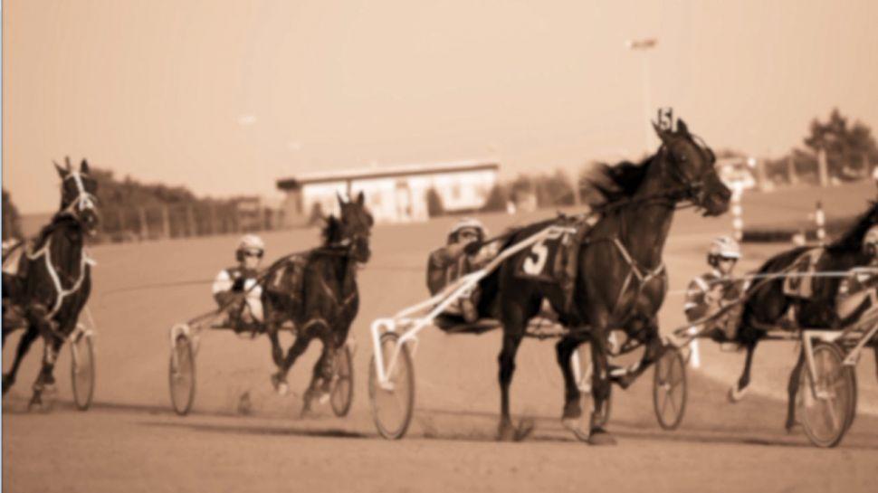 Lost Myrtle Beach Author Becky Billingsley on the Washington Park Horse Race Track