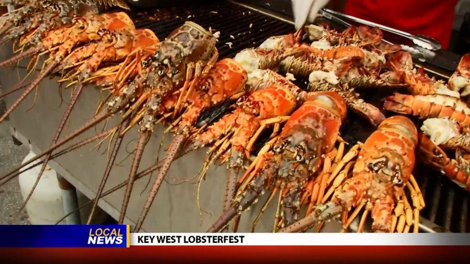 Key West Lobster Festival – Local News