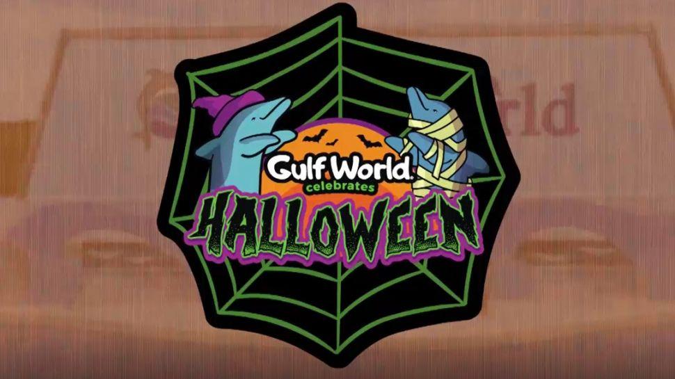 Halloween at Gulf World