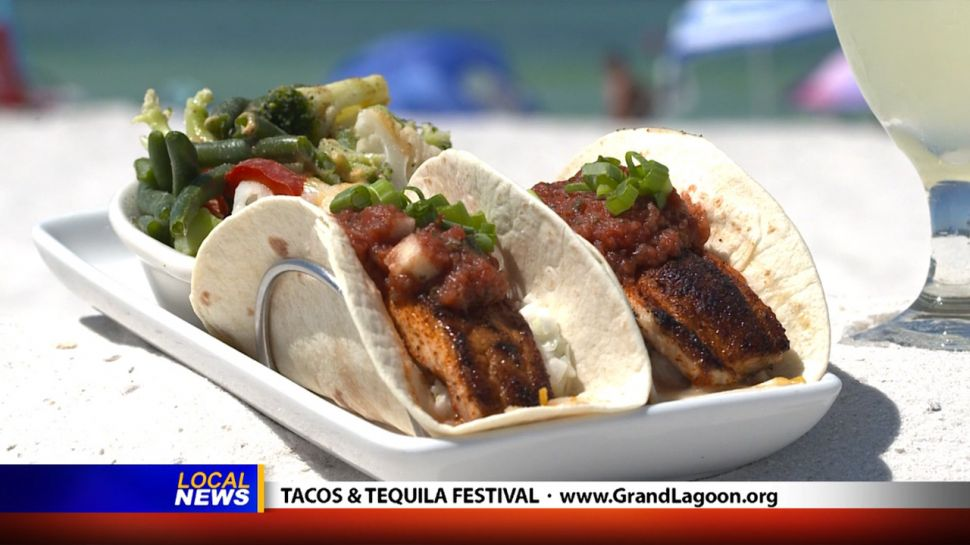 Tacos & Tequila Festival - Local News