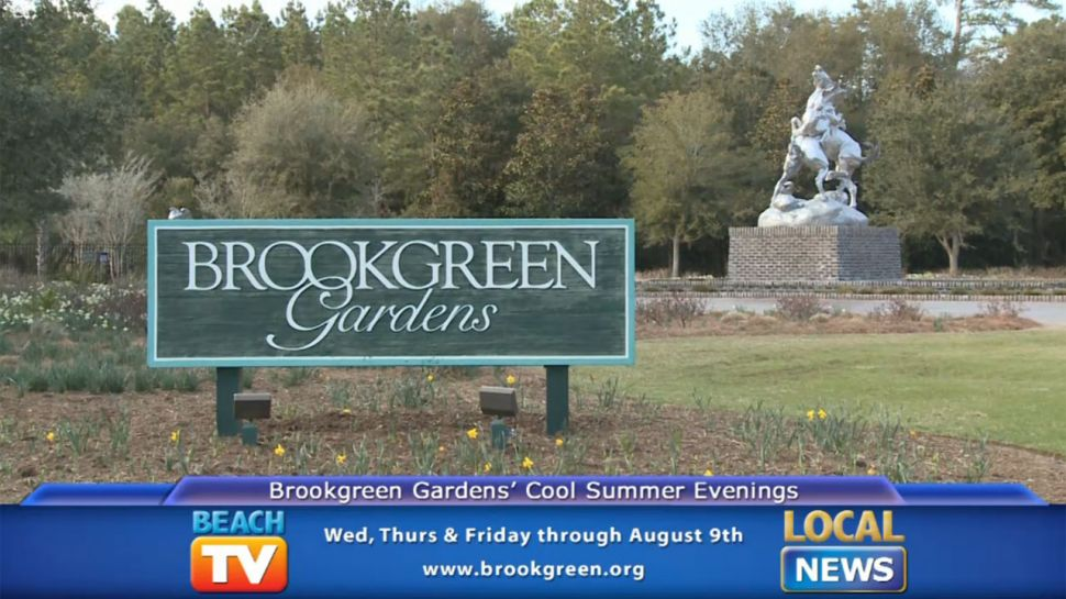Brookgreen Gardens Cool Summer Evenings -  Local News