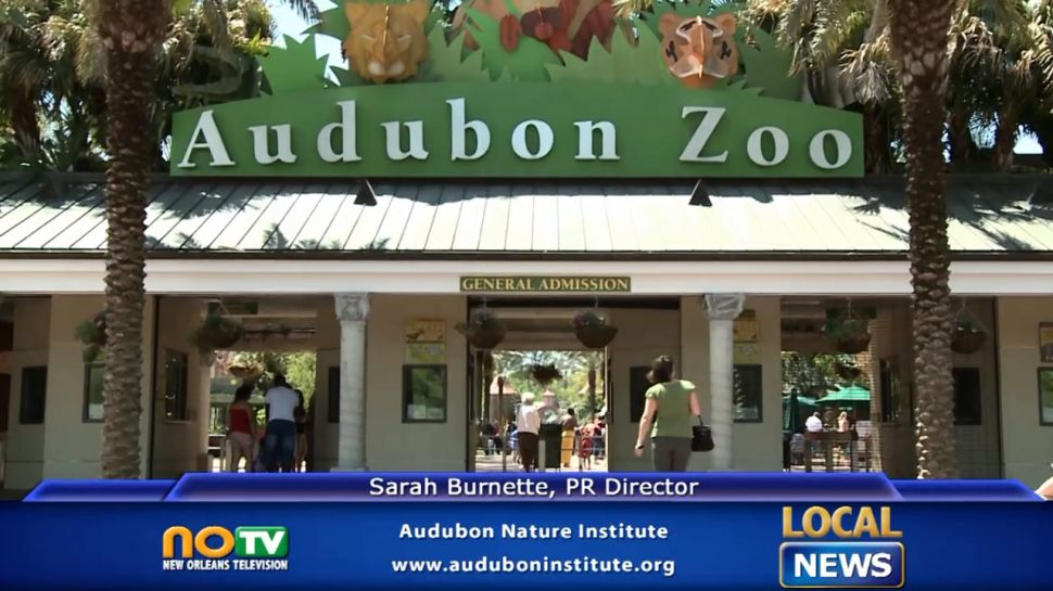 Audubon Institute - Local News