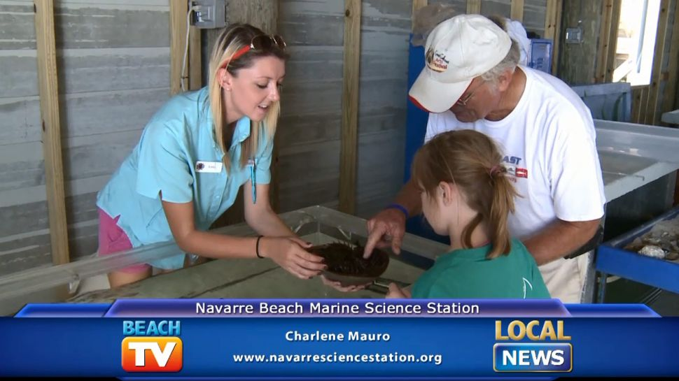 Charlene Mauro from Navarre Beach Marine Science Station - Local News