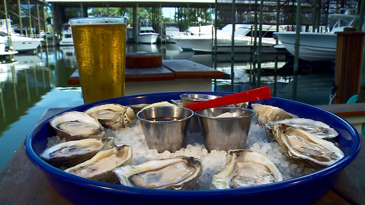 Alabama Oysters - Did You Know?
