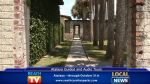 Atalaya Guided Tours - Local News