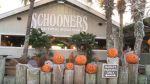 Halloween at Schooners