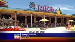 Lulu's Bay Bash - Local News