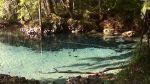 Econfina Natural Spring Water