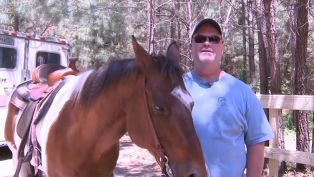 Horseback Riding of Myrtle Beach  - Did You Know?