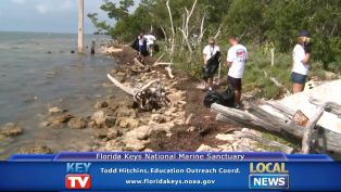 Todd Hitchins International Coastal Clean Up - Local News