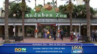 Audubon Zoo Boo at the Zoo - Local News