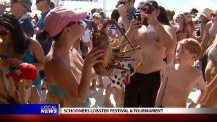 Schooners Lobster Festival & Tournament Co-Director
