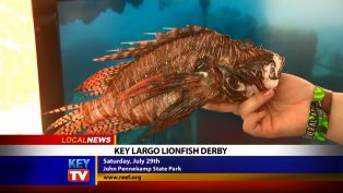 Key Largo Lionfish Derby - Local News