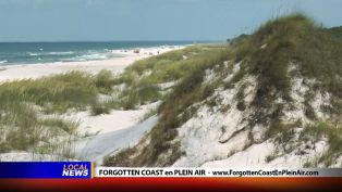 Forgotten Coast en Plein Air - Local News