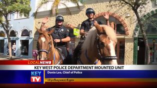 Key West Police Department Mounted Unit - Local News