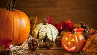 Ten Best Places to Get the Halloween Spirit in Atlanta