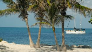 Top Parks in Key West & the Florida Keys