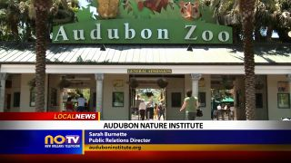 Audubon Nature Institute - Local...