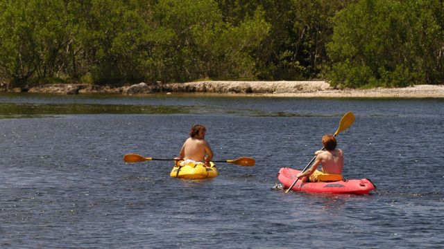 Kayaking: DOWN the Creek with a Paddle!