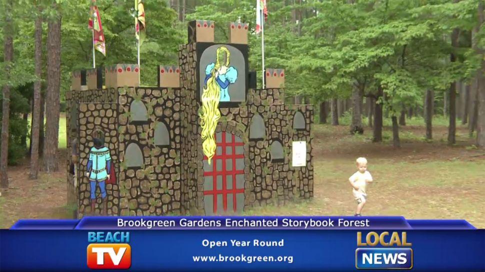 Brookgreen Gardens Storybook Forest - Local News