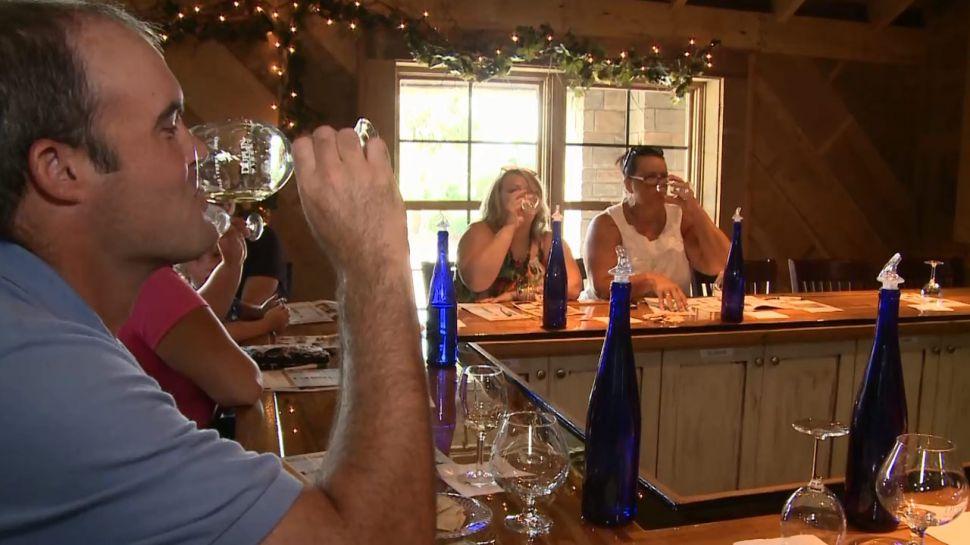 Duplin Winery Wine Tip - Grape Types
