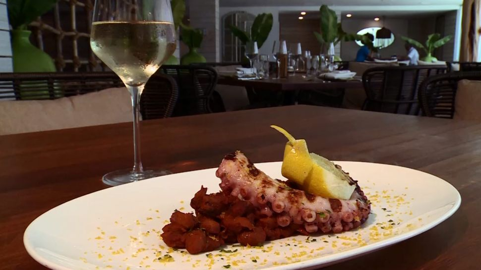 Rafael Rodriquez from Cucina Italiana Oltremare Ristorante - Celebrity Chefs