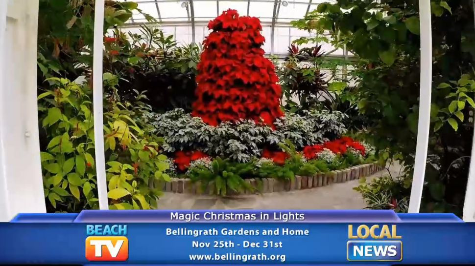 Magic Christmas in Lights - Local News