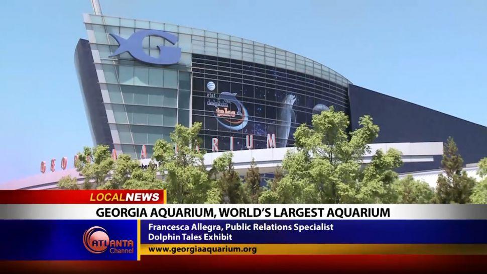Georgia Aquarium, World's Largest Aquarium - Local News