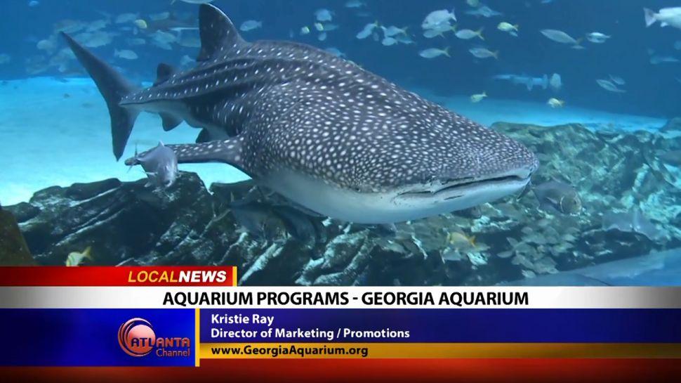 Aquarium Programs - Georgia Aquarium - Local News