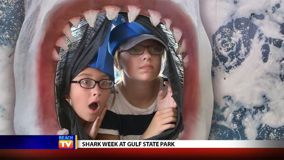 Gulf State Park Shark Week - Local News