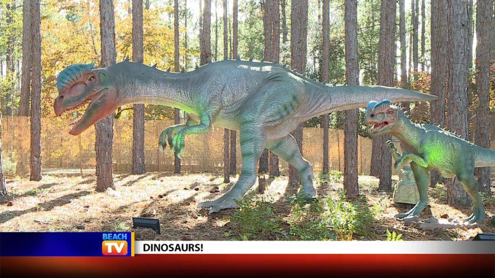 Brookgreen Gardens Dinosaurs - Local News