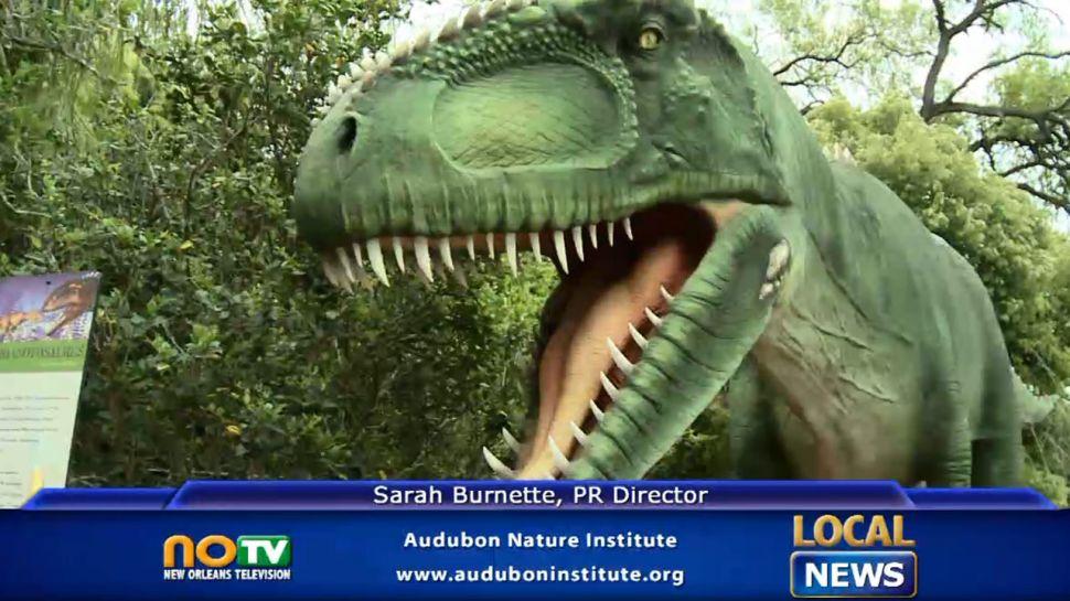 Audubon Nature Institute - Local News