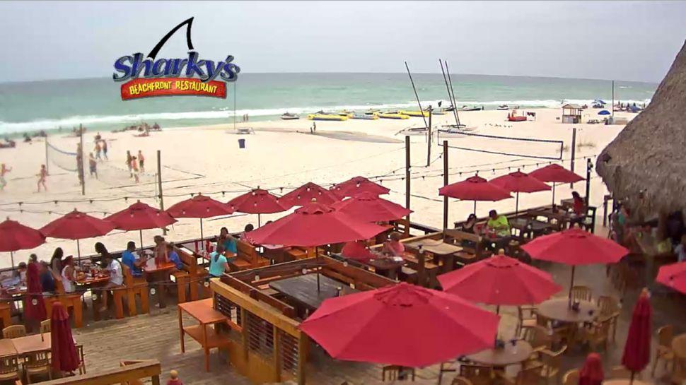 Sharky's Beach Cam